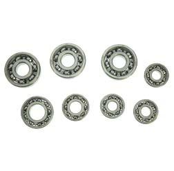 SET Kugellager SKF - für Rollermotor RM150, SR59, RM150/1 - 8-teilig