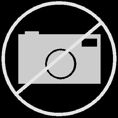 Stoßdämpferelement, hinten, schwarz, für Federbein mit innenliegender Feder
